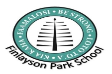 Case Study - Finlayson Park School LED Project